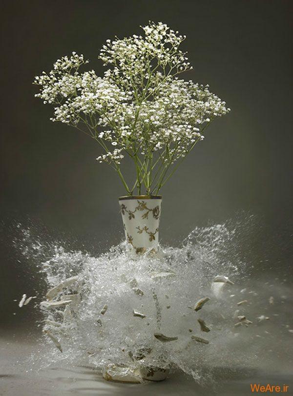 عکس  سرعت بالا از شکست گلدان (7)
