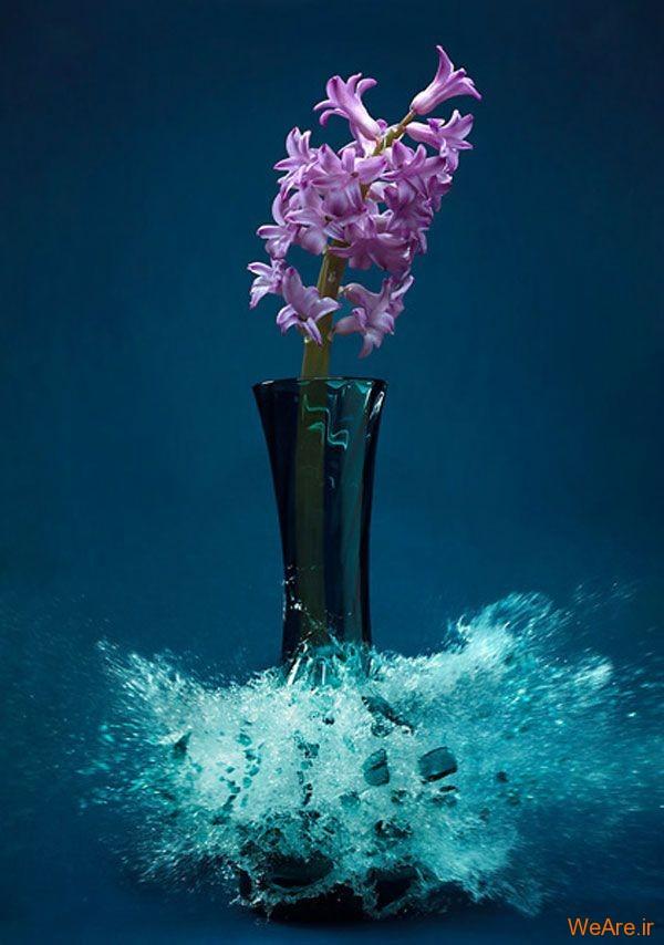 عکس  سرعت بالا از شکست گلدان (6)