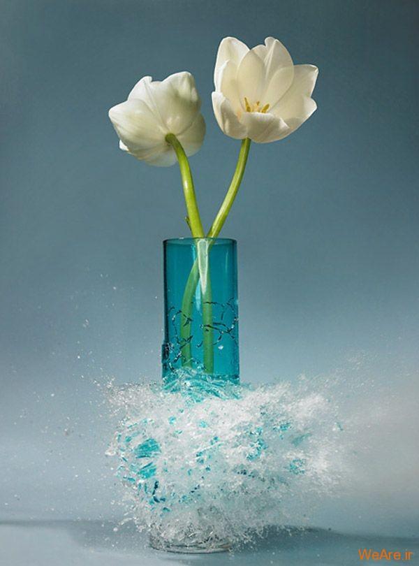 عکس  سرعت بالا از شکست گلدان (4)