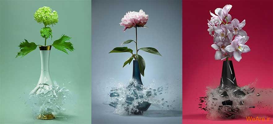 عکس های رویایی سرعت بالا از شکست گلدان ها