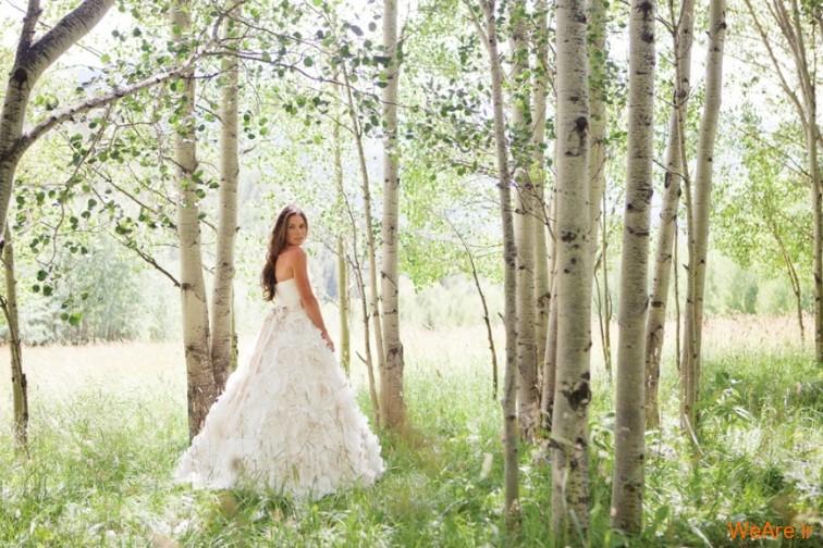 برترین عکس های عروسی جهان در سال ۲۰۱۲