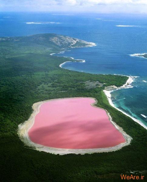 دریاچه صورتی (5)