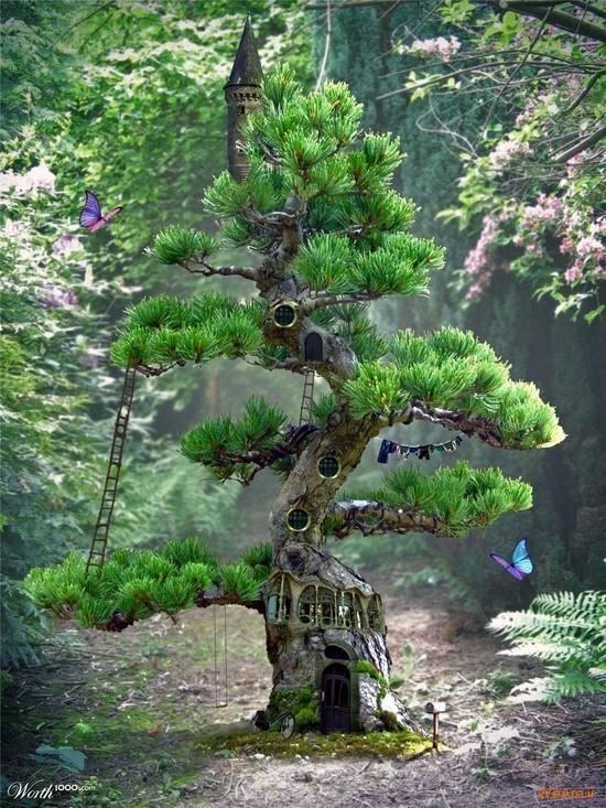 تصاویر هنری با الهام از طبیعت (4)