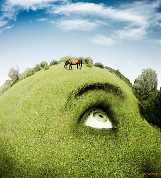 تصاویر هنری با الهام از طبیعت (7)