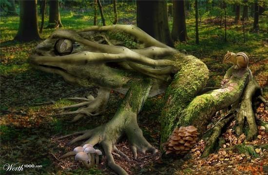 تصاویر هنری با الهام از طبیعت (6)