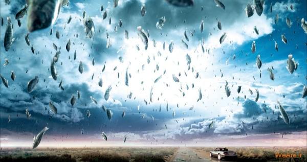 باران حیوانات زنده از آسمان!