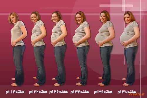 وضعیت بدن مادر در هفته های مختلف بارداری