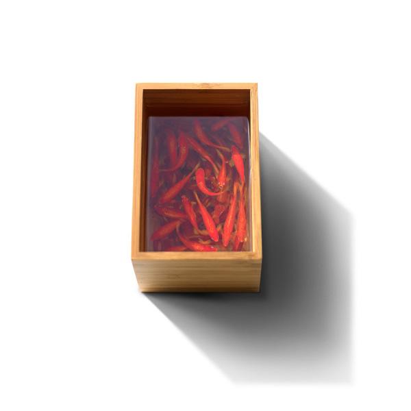 آثار فوق هنری سه بعدی (3D) (7)