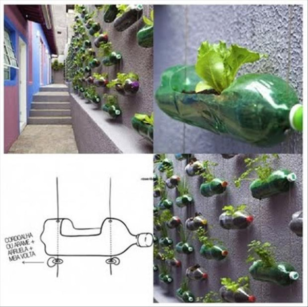 ایده های خلاقانه باغداری (3)