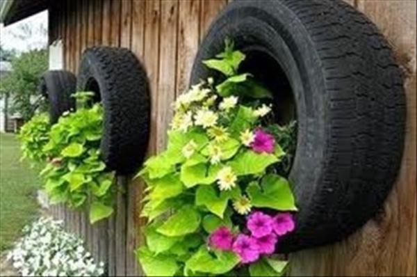 ایده های خلاقانه باغداری (7)