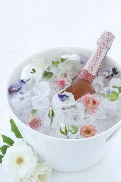 با یخ های زیبا و خلاقانه مهمانان خود را شگفت زده کنید