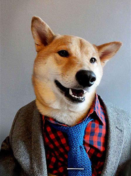 سگی با لباس مردانه (12)