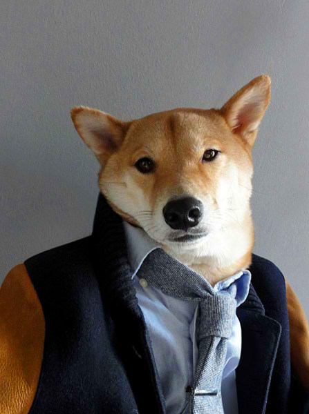 سگی با لباس مردانه (6)