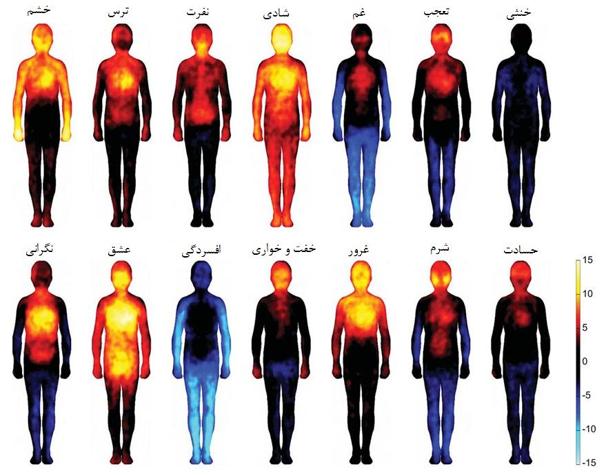 یک پژوهش علمی: نقشه احساسی بدن انسان