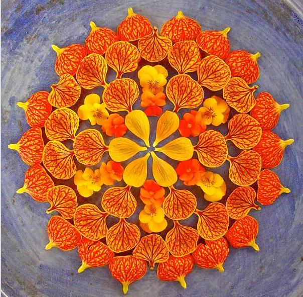 طراحی ماندالای رنگارنگ ساخته شده از گل ها و گیاهان