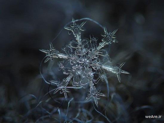 snowflake-closeup-550x412