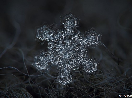 snowflake-closeup5-550x412