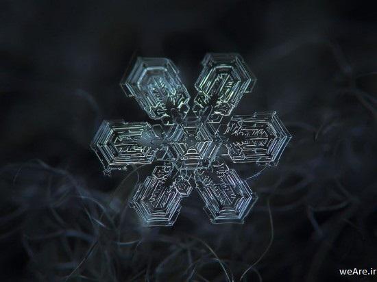 snowflake-closeup6-550x412