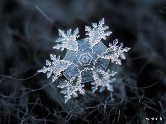 زیبایی های برف