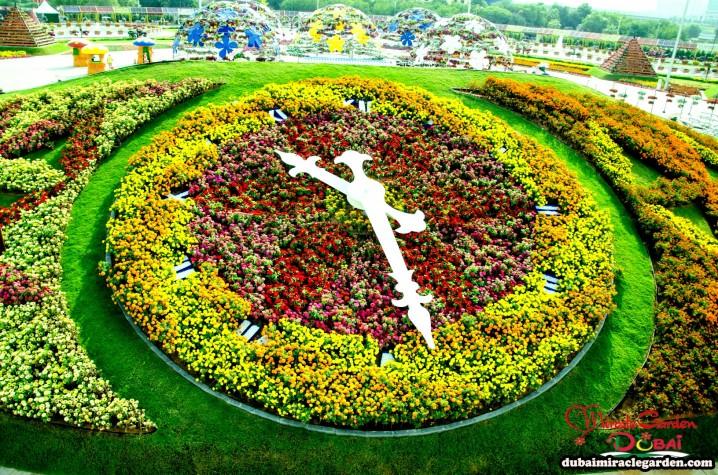 بزرگترین باغ گلی جهان-باغ معجزه دبی