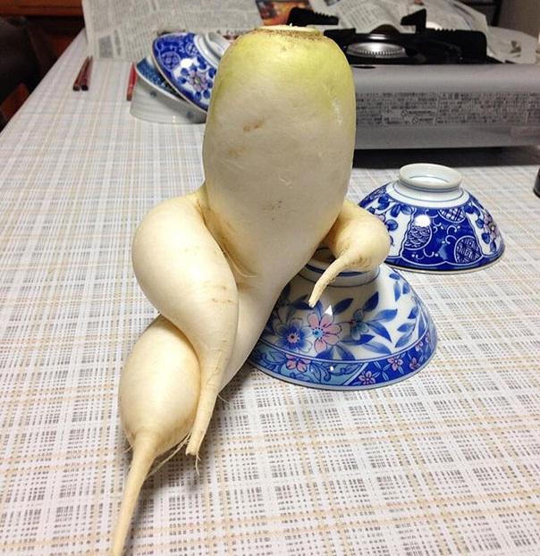 تصاویر خنده دار و جذاب از میوه ها و سبزیجات