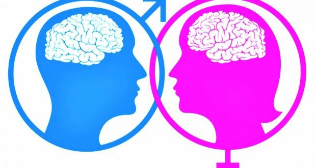 کنکاشی علمی درتفاوت های مغز زنان و مردان