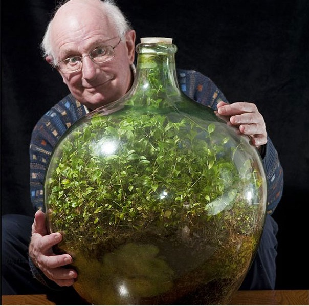 باغ مهر و موم شده و بدون آب، یک اکوسیستم بسته ۵۴ ساله