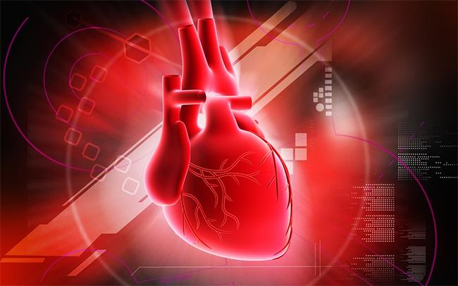 قلب چاپی