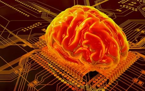 مغز انسان چند گیگابایت است؟