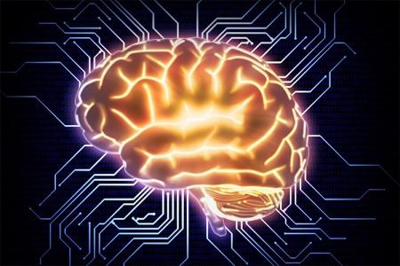 کدام بخش از مغز مسئول ساخت رویا است؟