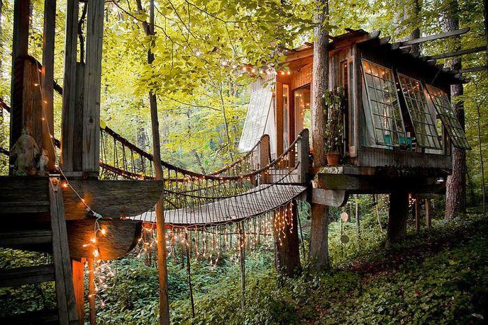 زیباترین خانه های درختی سراسر جهان