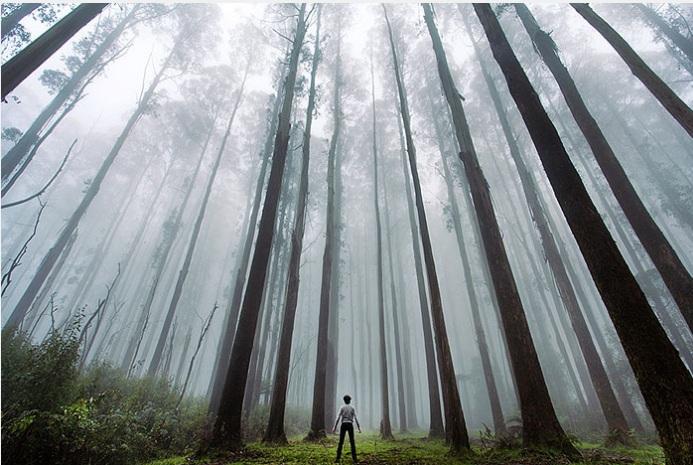 انسان کوچک در برابر عظمت طبیعت