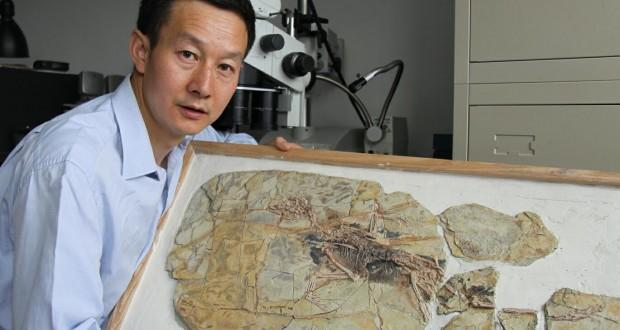 بزرگترین شکارچی دایناسورها کیست؟ (اینفوگراف)