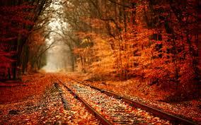 کاش چون پاییز بودم