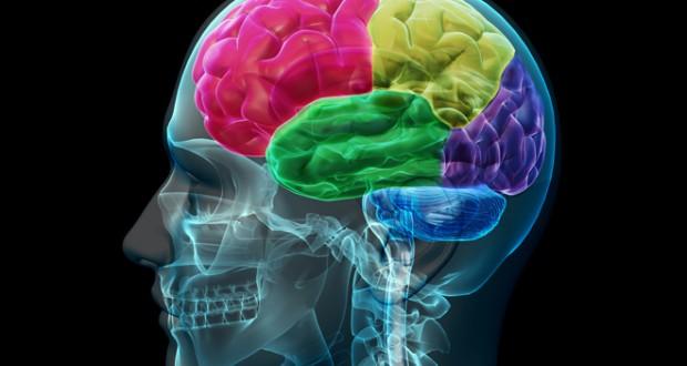 آدمهای خلاق بیشتر به بیماری روانی مبتلا میشوند؟