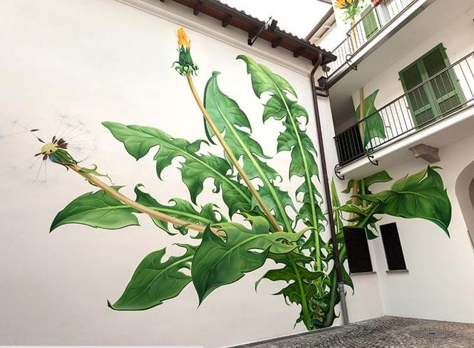 نقاشی های دیواری که به آرامی در سطح شهر می رویند