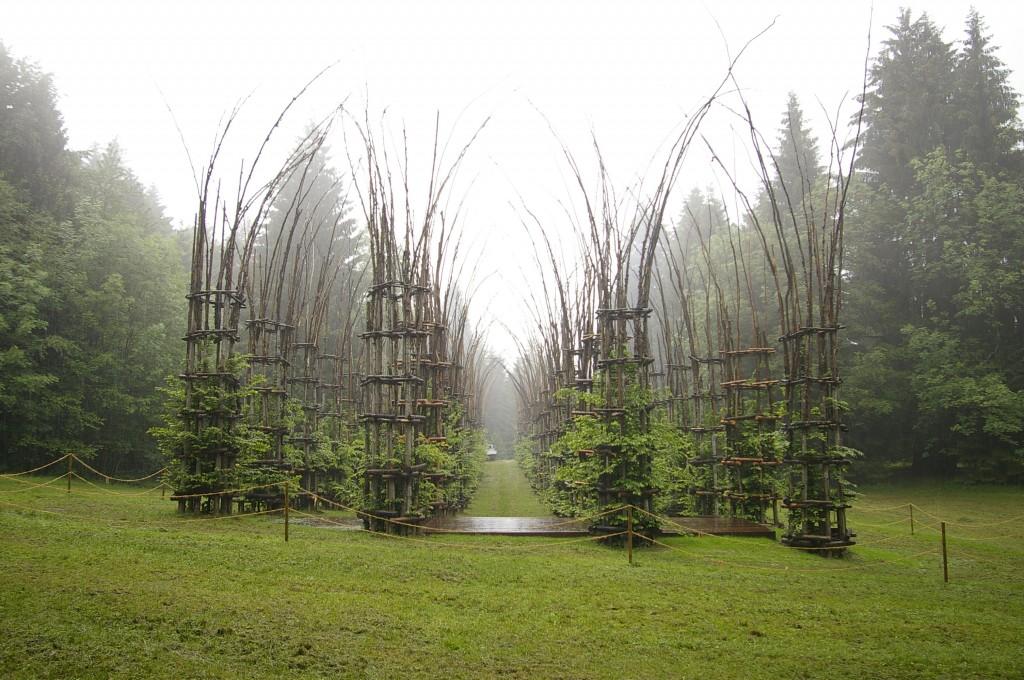 ARTE_SELLA_-_la_cattedrale_vegetale_di_Giuliano_Mauri_2002_