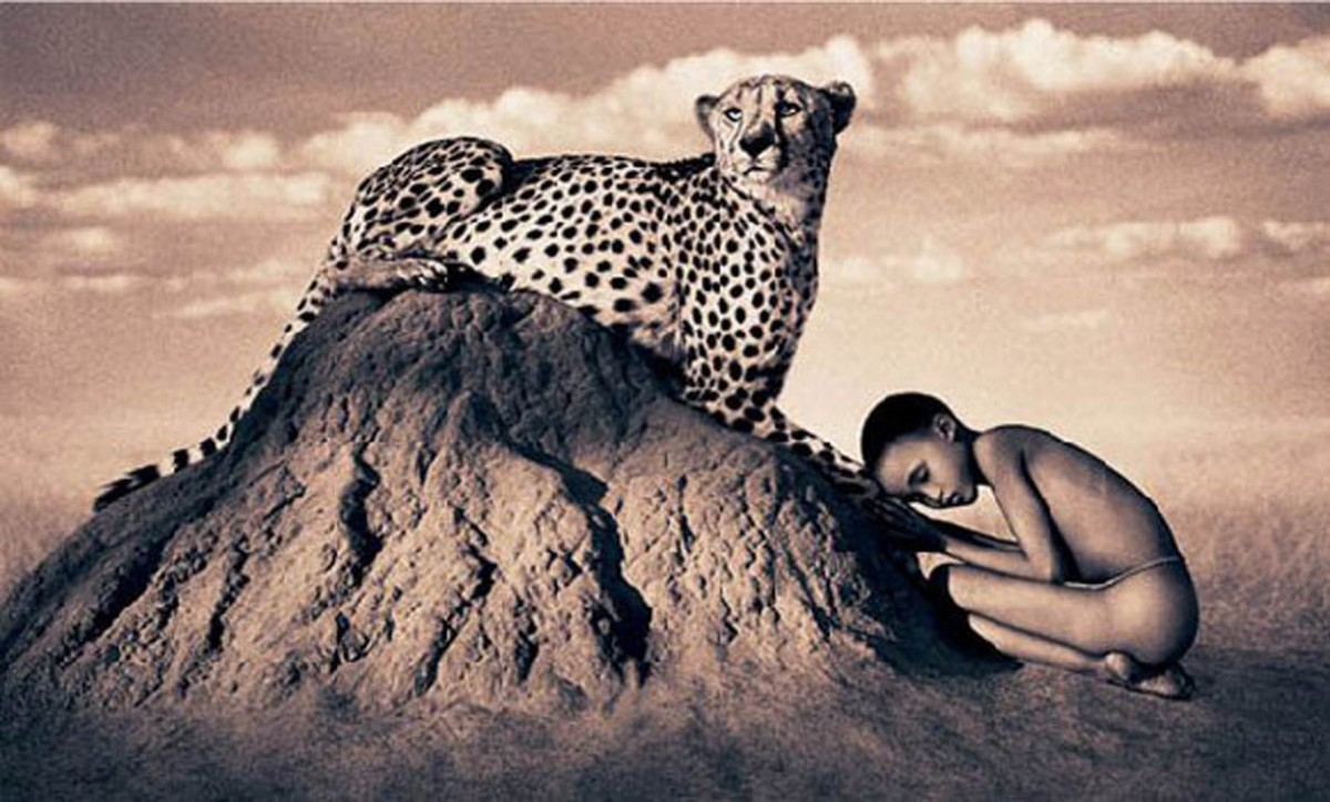 Arch2o-Nature-Masterpieces-Gregory-Colbert-4