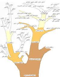 زبان مردم آذربایجان، آذری قدیم بوده است؟