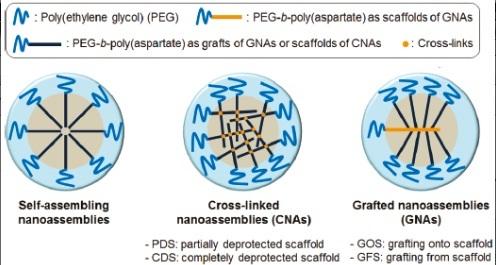 قالب هایِ پایدارِ سوپرامولکولی برای دارورسانی (Drug Delivery)