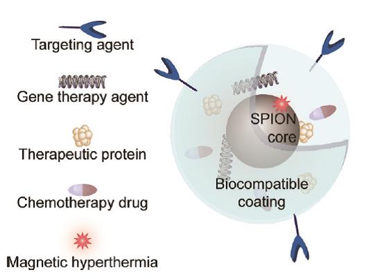 مهندسی سطح نانو ذرات اکسید آهن برای درمان هدفمند سرطان