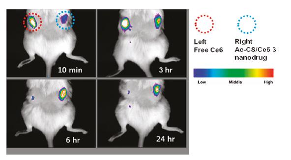 نانو داروی جدید برای فوتودینامیک تراپی