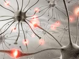 راه های نوید بخش درمان پارکینسون و آلزایمر