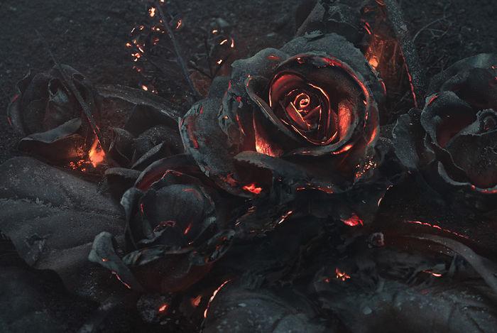 ساخت دسته گلهای رز آتشین