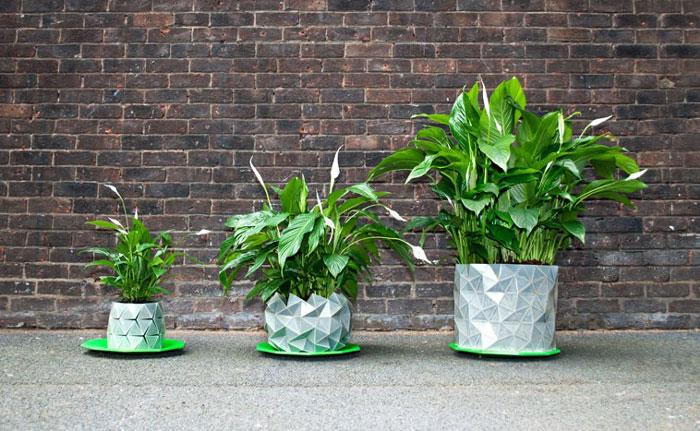 گلدان های 'اوریگامی' که همراه با گیاه رشد می کنند