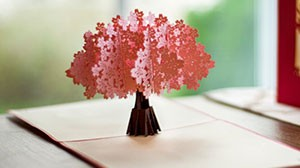 surprise-pop-up-card-design-kirigami-latest
