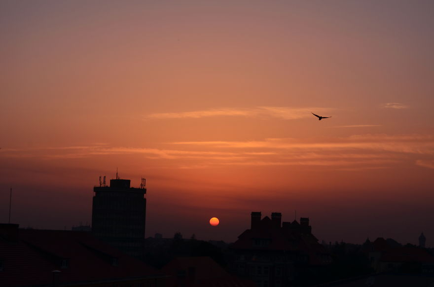 I-photograph-the-sunset-everyday-from-the-same-spot-Here-are-3-years-of-amazing-sunsets19__880