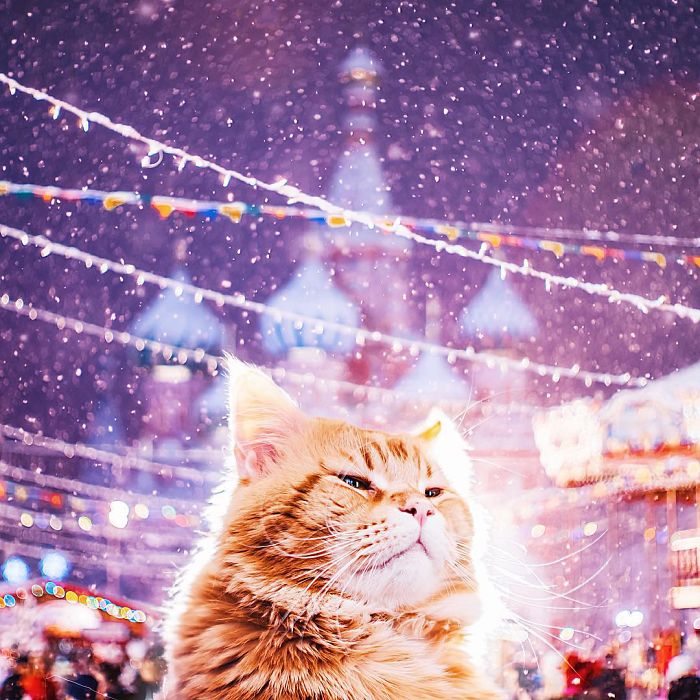 moscow-city-looked-like-a-fairytale-during-orthodox-christmas-17__700