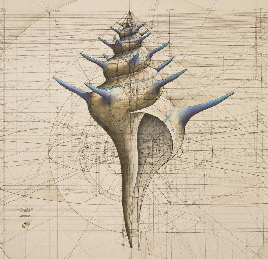 به تصویر کشیدن زیبایی های طبیعت با طرح های ریاضی
