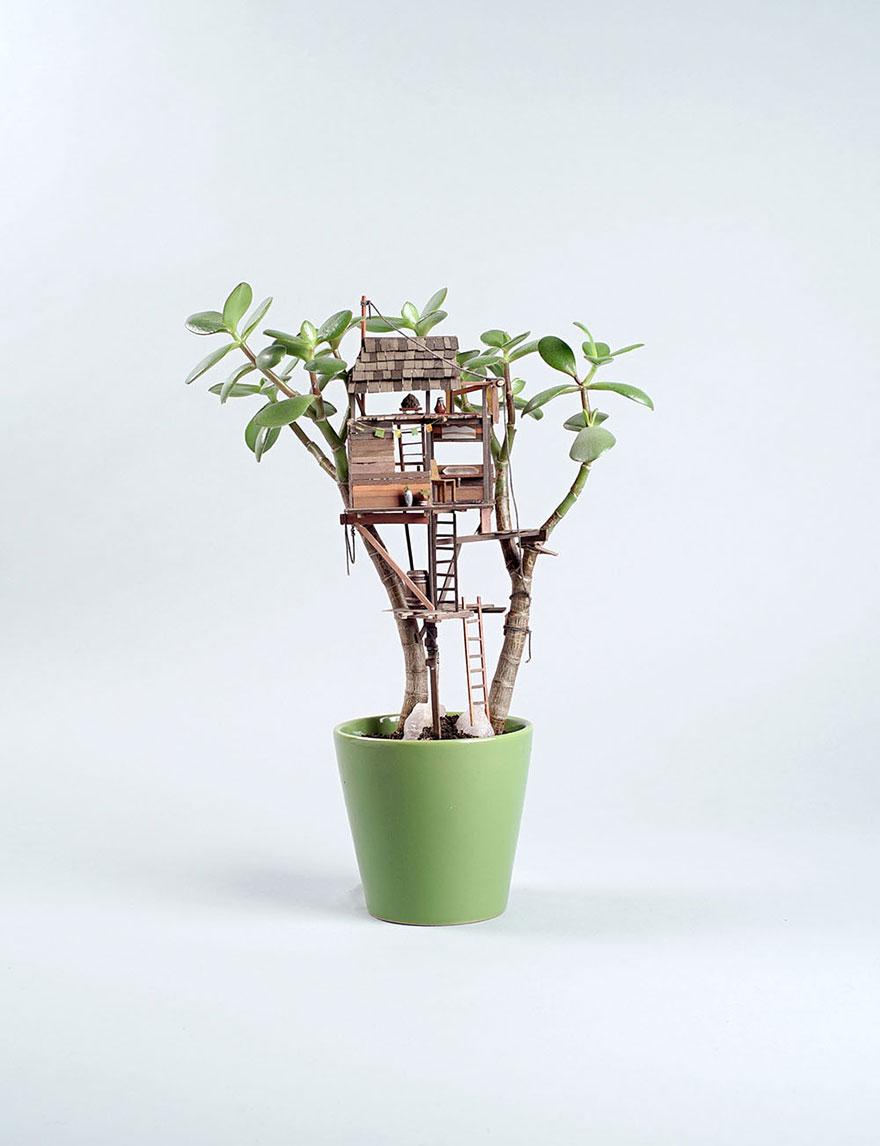 miniature-treehouse-houseplants-somewhere-small-jedediah-corwyn-voltz-7